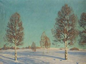 Alexandr Ivanovich Anichkov (XIX-1930), Pejzaż zimowy z brzozami, 1917 r.