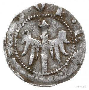 kwartnik 1. ćwierć XIV w., Świdnica; Aw: Gotycka litera...