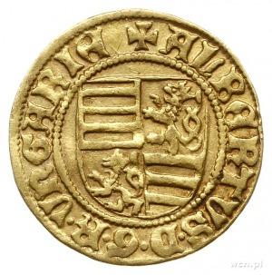 goldgulden 1438, Krzemnica (Körmöcbanya), mincerz Rudel...