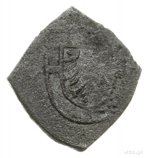 grosz - klipa bez daty (1520-1521); Aw: Tarcza wielkieg...