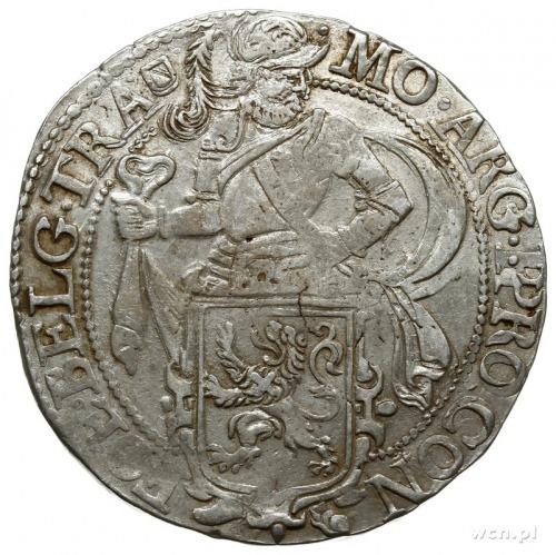 talar lewkowy (Leeuwendaalder) 1648, znak menniczy herb...