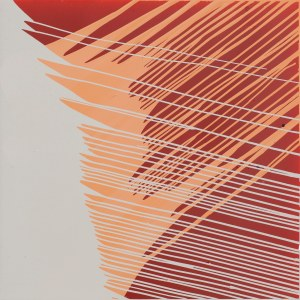 Robert Jaworski, Grey/pink/red, 2019