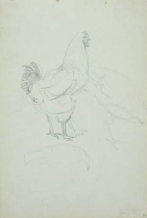 Włodzimierz Tetmajer (1861 - 1923), Kura oraz szkice domowego ptactwa, ok. 1900