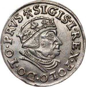 Zygmunt I Stary, trojak 1539, Gdańsk