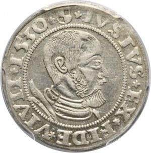 Prusy Książęce, Albert Hohenzollern, grosz 1530, Królewiec