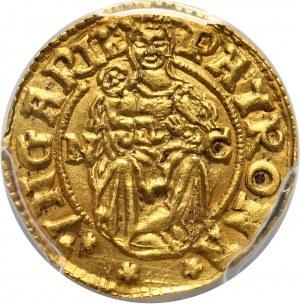Węgry, Ferdynand I, denar w złocie wagi 1/2 dukata 1554 NC