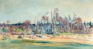 Julian Fałat (1853 Tuligłowy – 1929 Bystra) Osiek, 1913 r.