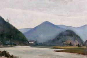 Irena Weiss zw. Aneri (1888 Łódź - 1981 Kraków) Pejzaż górski z rzeką