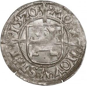 Pomorze, Ks. szczecińskie, Bogusław X, Szeląg Szczecin 1520