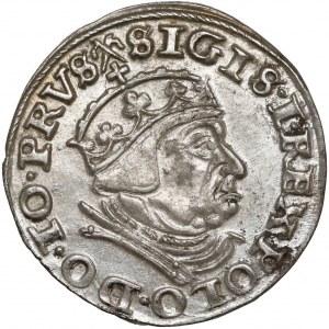 Zygmunt I Stary, Trojak Gdańsk 1540 - piękny
