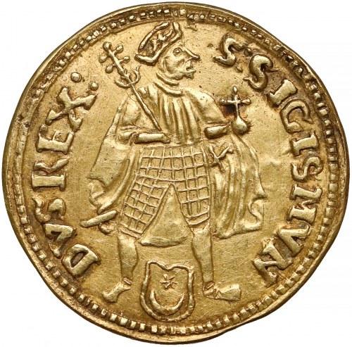 Zygmunt I Stary, Dukat koronny 1538 - fałszerstwo FAJNA