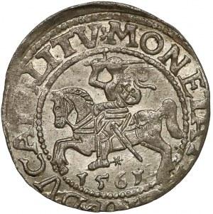Zygmunt II August, Półgrosz Wilno 1561 - LITV