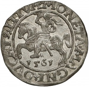 Zygmunt II August, Półgrosz Wilno 1561 - LITVA