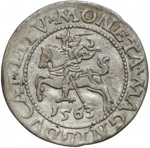 Zygmunt II August, Półgrosz Wilno 1563 - DVX*LI