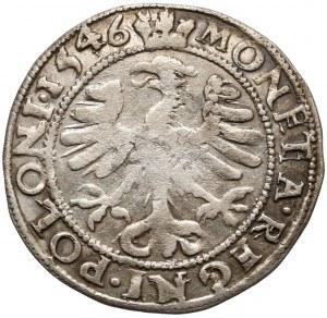Zygmunt I Stary, Grosz Kraków 1546 z ANIOŁKAMI (AMORKAMI) w koronie - RZADKOŚĆ