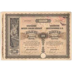 Galicyjskie Zakłady Górnicze, 200 kr 1907