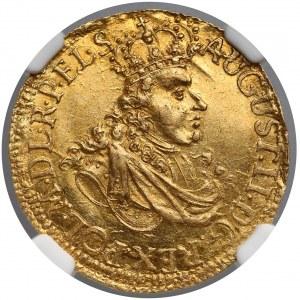 August II Mocny, Dukat Toruń 1702 - RZADKOŚĆ