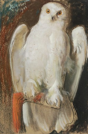 Leon WYCZÓŁKOWSKI (1852-1936), Sowa, 1903