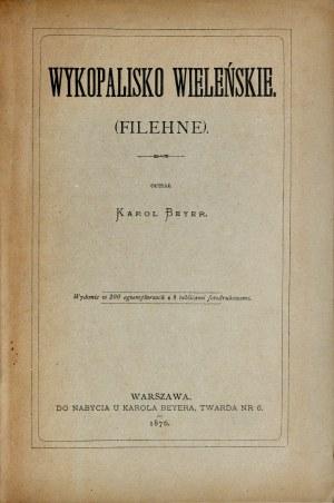 Beyer K., Wykopalisko Wieleńskie, Warszawa 1876.