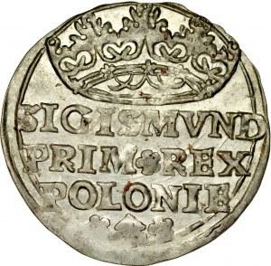 Zygmunt I Stary 1506-1548, Grosz 1529, Kraków.