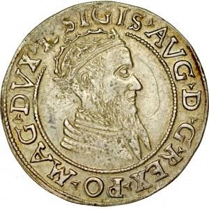 Zygmunt II August 1545-1572, Czworak 1569, Wilno.