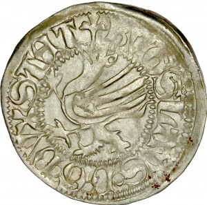 Pomorze, Bogusław X 1478-1523, Szeląg 1489, Gardziec.