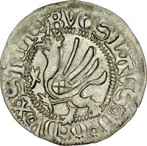 Pomorze, Bogusław X 1478-1523, Szeląg 1492, Dąbie.