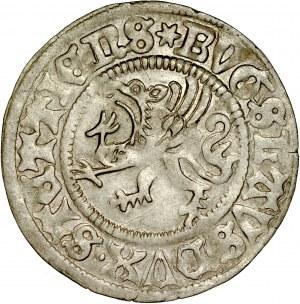 Pomorze, Bogusław X 1478-1523, Szeląg 1500, Szczecin.
