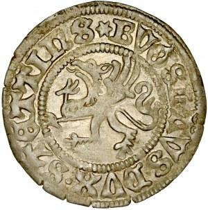 Pomorze, Bogusław X 1478-1523, Szeląg 1501, Szczecin.