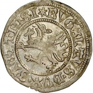 Pomorze, Bogusław X 1478-1523, Szeląg 1503, Szczecin.
