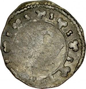 Ks. Wrocławskie, Henryk III lub synowie 1306-1314, Poznań, Av.: Duża litera P, dookoła ozdobniki w formie trójlistnych rozetek, RRR.