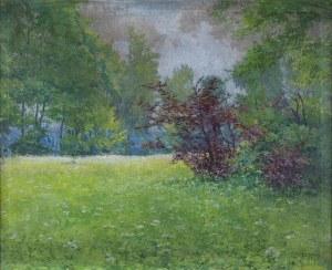 Teodor Ziomek (1874 - 1937), Wiosenna Łąka