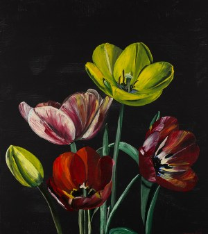 no name	Tulipany 2, 2018