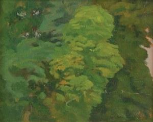 Stanisław Czajkowski (1878-1954), Drzewa w Kaliszanach, 1953
