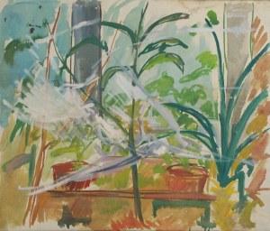 Paweł Taranczewski (Ur. 1940), Kwiaty w donicach w oknie
