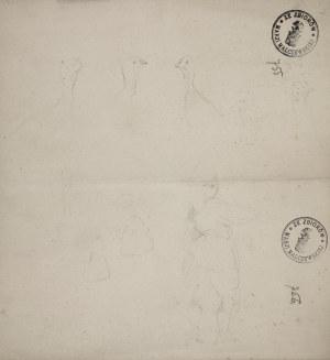 Jacek Malczewski (1854-1929), Szkice indyków i wiejskiej dziewczyny z profilu