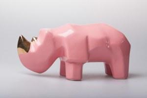 Jakub Niewdana, Mały nosorożec, z serii Safari