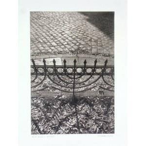 """ALEKSANDER MITKA Z cyklu """"Kazimierz Krakowski – Ogrodzenie"""", 2001"""