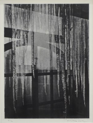 """ALEKSANDER MITKA Z cyklu """"Atelier – Okno Zimą, 2002"""