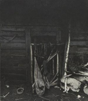 MACIEJ PLEWIŃSKI Furtka, 1988/2018
