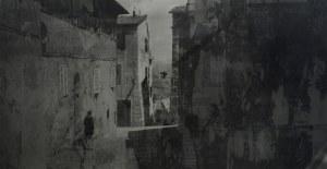 MACIEJ PLEWIŃSKI Siena II, 2012/2013