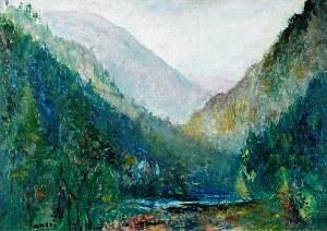 Aneri Irena Weissowa (1888-1981), Pejzaż górski - Szczawnica, 1965