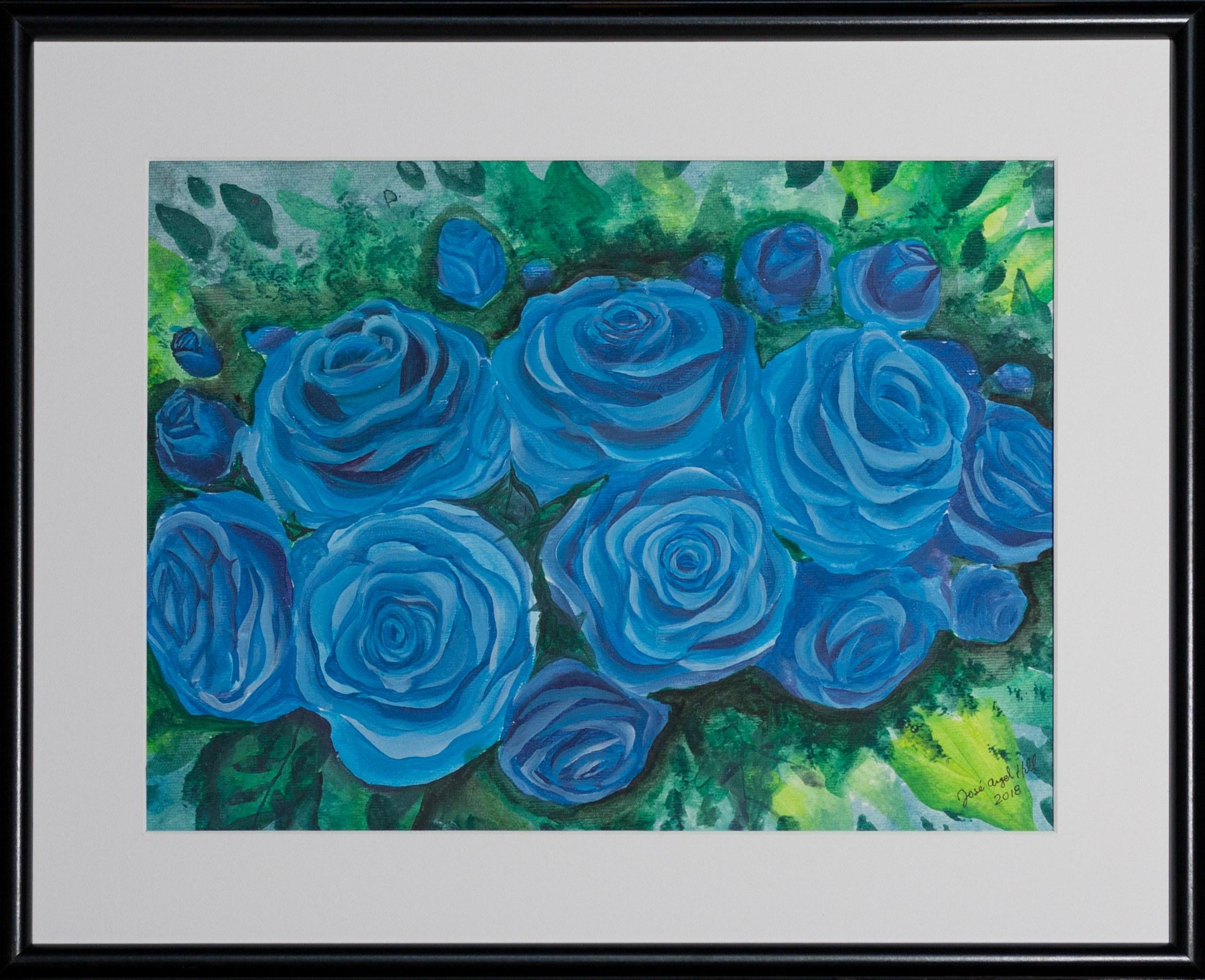 José Angel Hill, Blue roses
