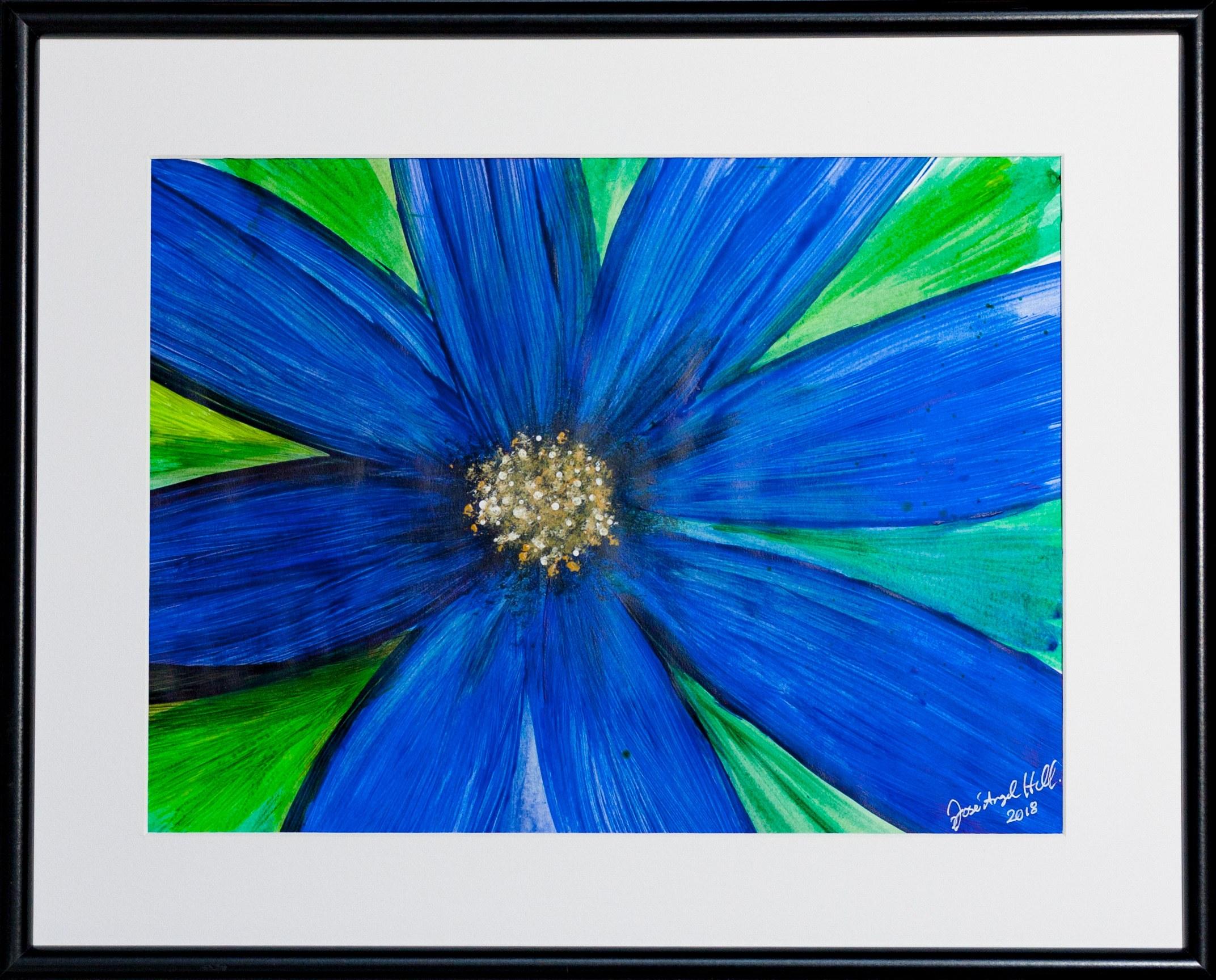 José Angel Hill, Flower