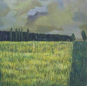 Olena Horhol (Ur. 1994), Pole rzepakowe, 2017