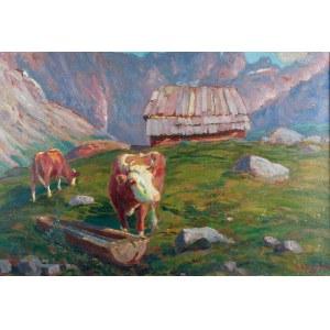 Zefiryn ĆWIKLIŃSKI (1871-1930), Krowy na hali, 1923