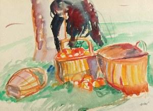 Wojciech WEISS (1875-1950), Kosze z jabłkami - Kalwaria, 1912