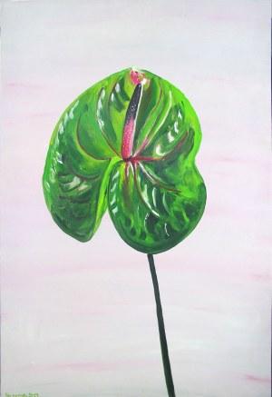 No Name, 50. Anthurium 4, z cyklu Awangarda bzy maluje 2, 2019