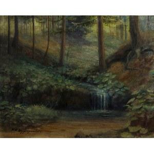 Feliks Kazimierz Wygrzywalski (1903 Rzym – 1966), Strumyk w lesie