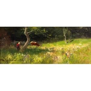 Roman Kochanowski (1857 Kraków – 1945 Freising w Bawarii) Na łące